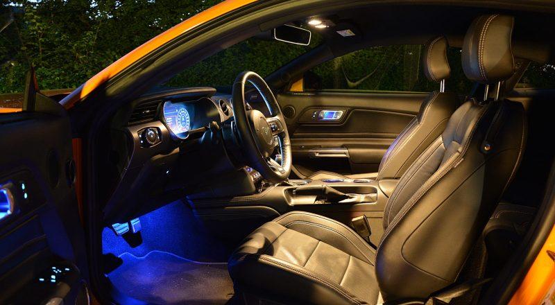 Ukročeni konji – Ford Mustang