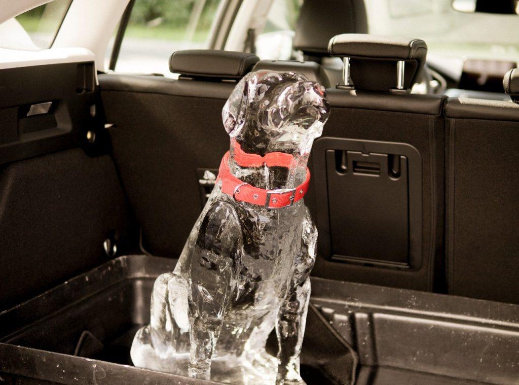 Ford tehnologija pomaga preprečiti, da bi otroci ostali v vročih avtomobilih